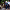 100 yıl sonra su sevinci