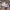 CHP Bakırköy Yeniden Gizem Başaran'a Emanet